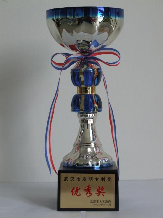 武汉市发明专利奖.png