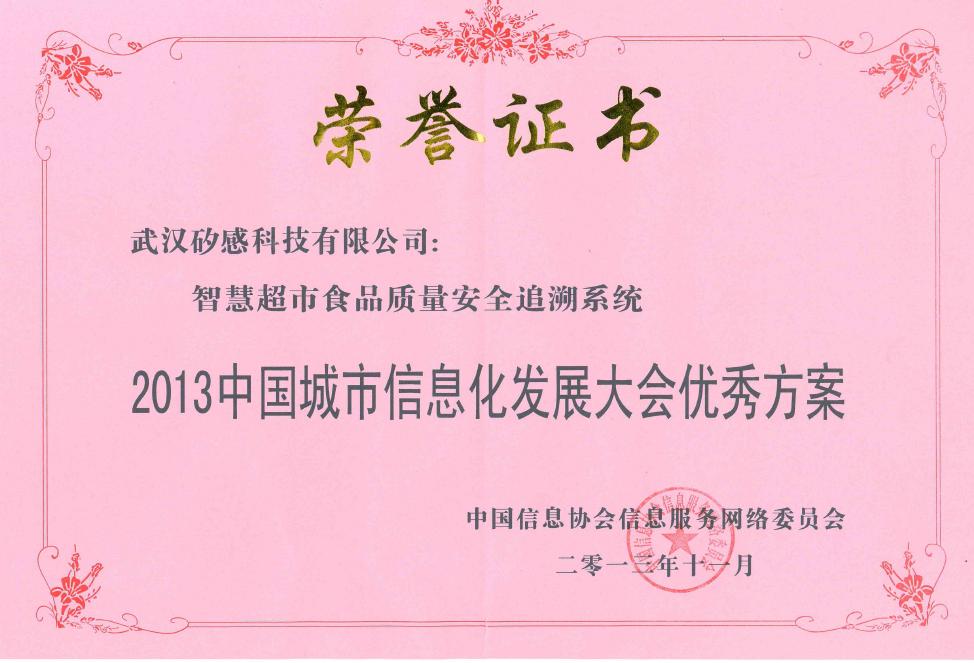 2013中国城市信息化发展大会优秀方案奖.png