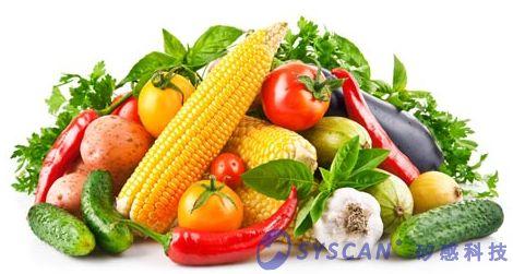 黄绿蔬菜.png